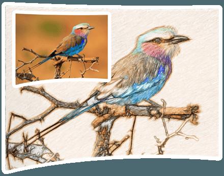 Sketch Drawer Pro — 把照片转换成素描[PC][$24→0]