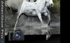 Corel AfterShot 3 — 数码照片管理编辑软件[PC&Mac]